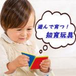 【専門家推奨!】年齢別ギフト◎貰って嬉しい知育玩具~木のおもちゃ『エド・インター』~